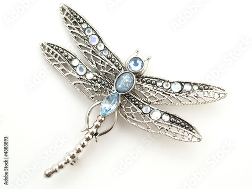 Fotomural dragonfly jewelry