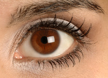 Pretty Brown Eye