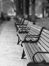 Paris Park Benches