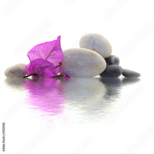 Fotobehang Zen décor zen