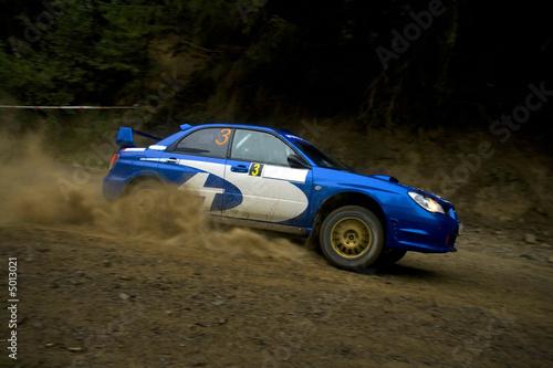 Deurstickers Snelle auto s Rally