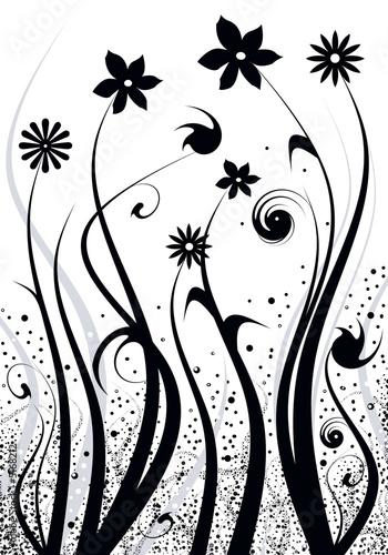 Staande foto Bloemen zwart wit compostion florale