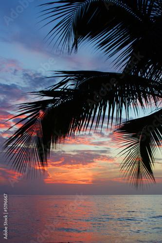 """Community Maske """"army blue"""" - Tropischer Sonnenuntergang (von photosite)"""