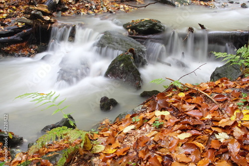 A secluded cascade in the forests at moumtains Wallpaper Mural