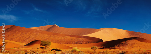 Obrazy na płótnie Canvas Namib Desert