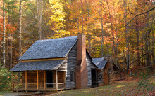 Log Cabin In A Wooded Setting ...