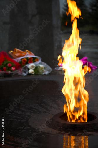 Foto op Canvas Kruiderij war memorial