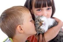 Children And Cat