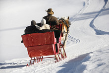 Horse-drawn Sleigh Ride.