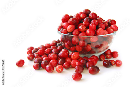 Fotografia  Cranberries in a bowl