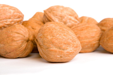 Walnuts on white background, focus on front nut