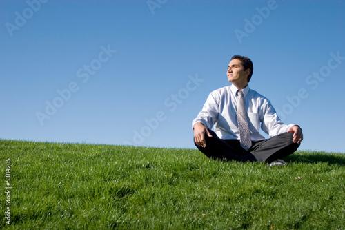 Fotografie, Obraz  Businessman meditating on green grass