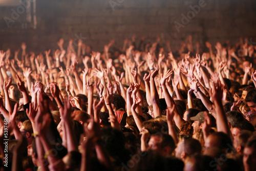 Fototapeta foule concert fan obraz