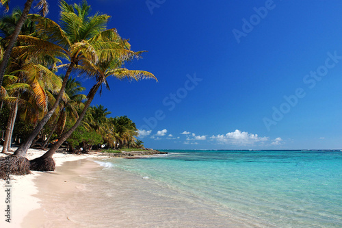 Photo Stands Caribbean Petite Anse