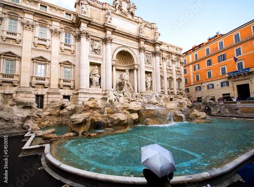 Aluminium Prints Rome Fountain of Trevi, Rome
