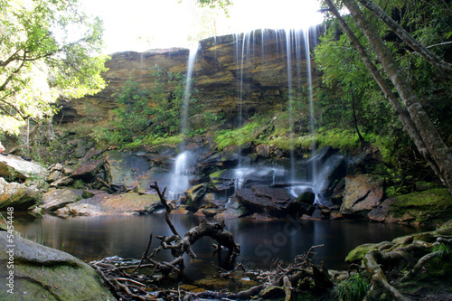 Fototapety, obrazy: Forest Waterfall