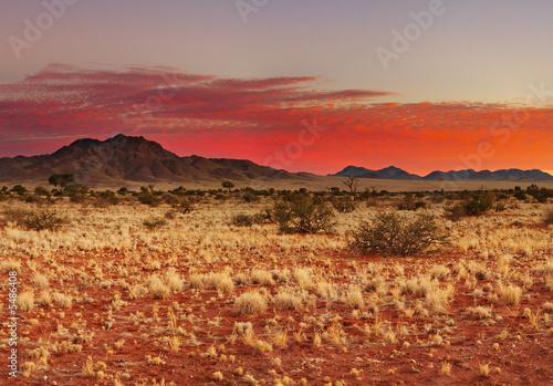 Poster de jardin Desert de sable Colorful sunset in Kalahari Desert, Namibia