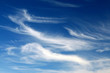 canvas print picture - cirrus clouds