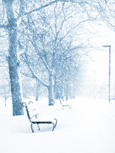 Empty Benches In A Snow Storm, Along Charles River In Boston
