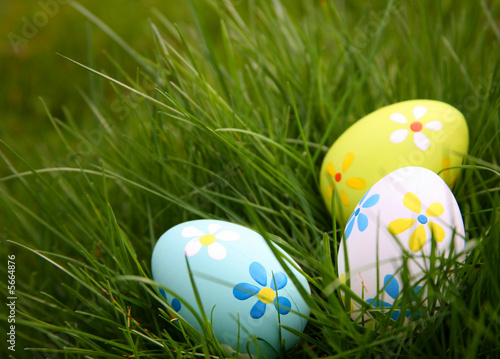 Photo  Painted Colorful Easter Eggs in Grass