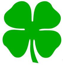 Trevo Da Irlanda