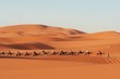 canvas print picture Sahara desert