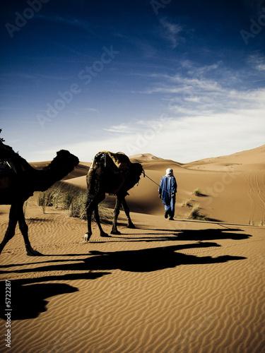 Foto op Canvas Marokko Morocco's desert
