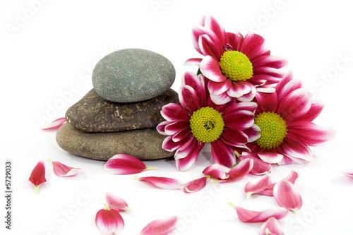 Doppelrollo mit Motiv - zen spa stones with flowers