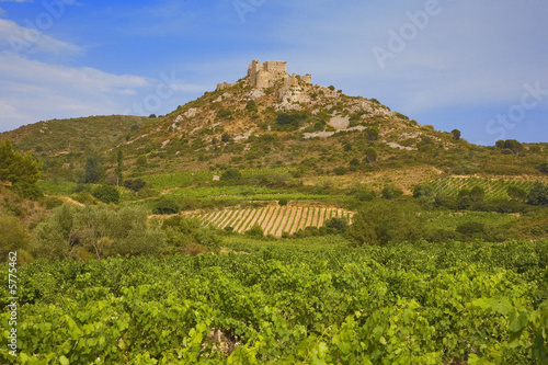 Photo  roussillon : chateau cathare d'aguilar