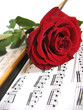 Red rose on music sheet