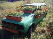 Altes Auto Mit Blumen