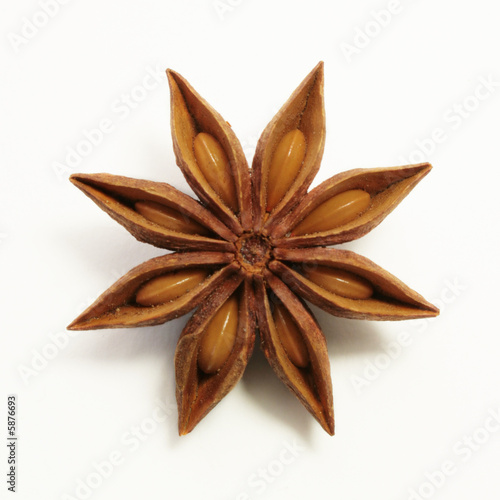 Canvas Prints Spices Anis star