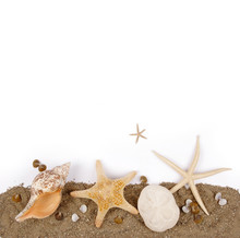 Beach Sand With Sea Shell And Star Fish Postcard