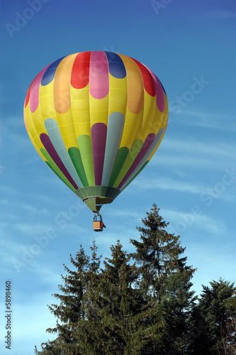 Fototapeta Hot air balloon above the trees