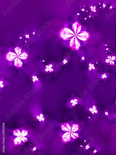 Fototapety, obrazy: Beautiful flowers