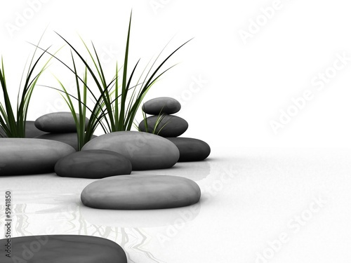 kamienie-i-trawa