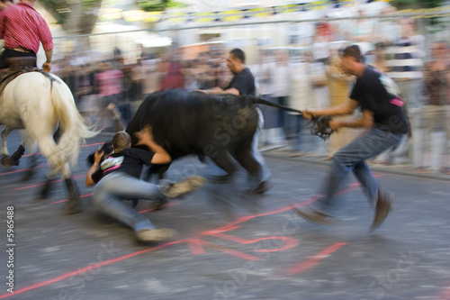 Photo sur Aluminium Corrida Spectacle taurin : course de taureau