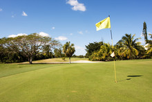 Yellow Flag On Golf Course Putting Green