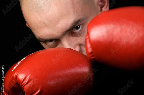 Fotografie, Tablou Boxer.