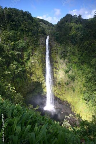 Poster Parc Naturel Akaka Falls on Big Island of Hawaii