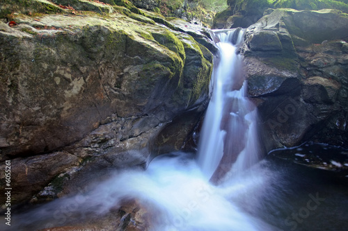 Aluminium Prints Forest river Waterfall and stones