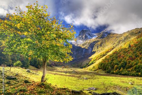 Valle de Arán. Pirineos.