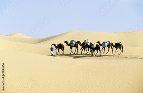 Photo Stands Algeria CAMEL caravan