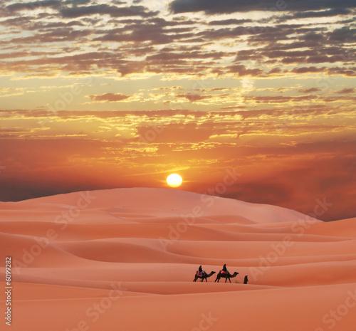 Spoed Fotobehang Kameel Caravan in Sahara desert