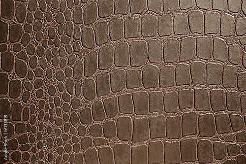 Poster Crocodile alligator skin pattern