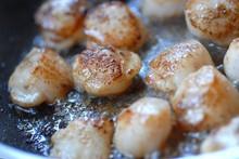 Cuisine Gastronomique - Coquille Saint Jacques