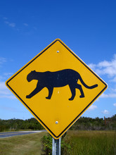 Panther-crossing Road Sign In ...