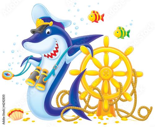 Foto-Plissee - Captain Shark (von Alexey Bannykh)