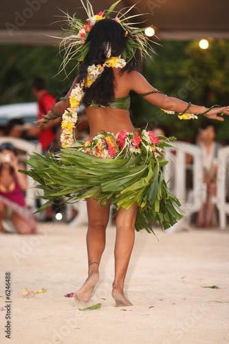 Obraz na płótnie tahiti danse