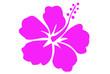 canvas print picture - Hibiscus 8
